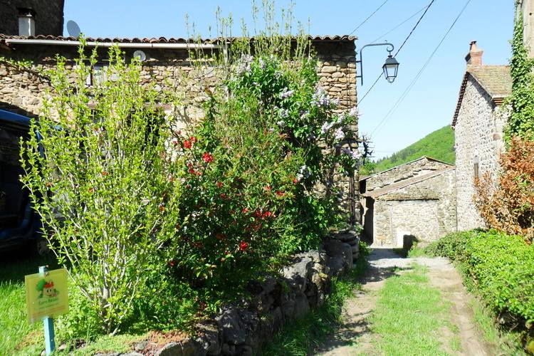 Ferienhaus Gite - VILLENEUVE D'ALLIER (133897), Villeneuve d'Allier, Haute-Loire, Auvergne, Frankreich, Bild 3