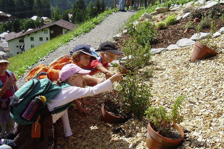 Holiday house Selbstversorgerhaus Lumper (60148), Holzgau, Lechtal, Tyrol, Austria, picture 29