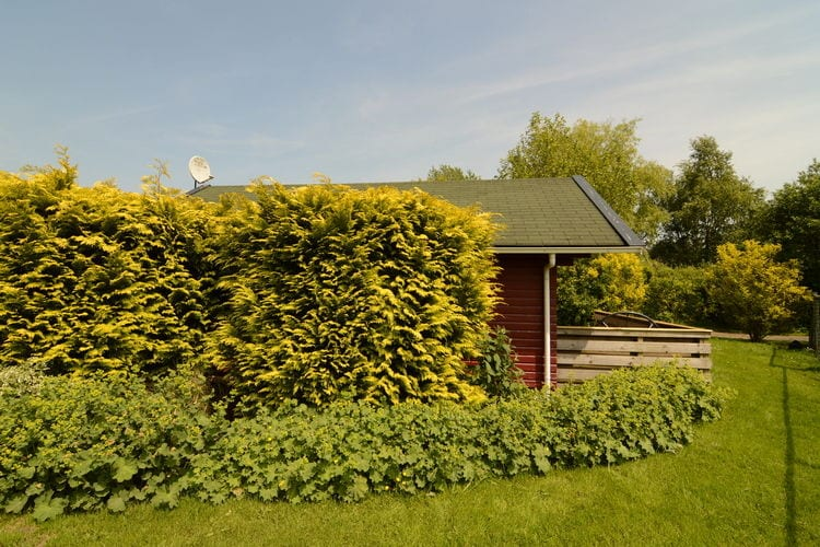 Ferienhaus Sonneborghe (59604), Kollumerzwaag, , , Niederlande, Bild 6