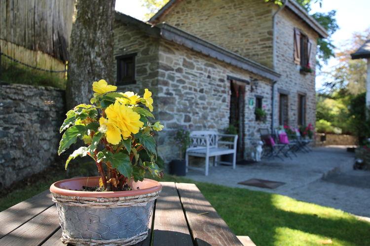 Ferienhaus La Bergerie (59250), Baillamont, Namur, Wallonien, Belgien, Bild 20