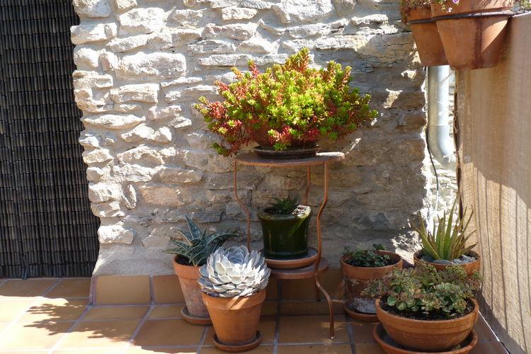 Ferienwohnung Casa Vella (60061), Castigaleu, Huesca, Aragonien, Spanien, Bild 36