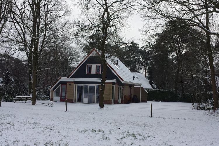 Ferienhaus Buitenplaats Berg en Bos 12 (61503), Lemele, Salland, Overijssel, Niederlande, Bild 6