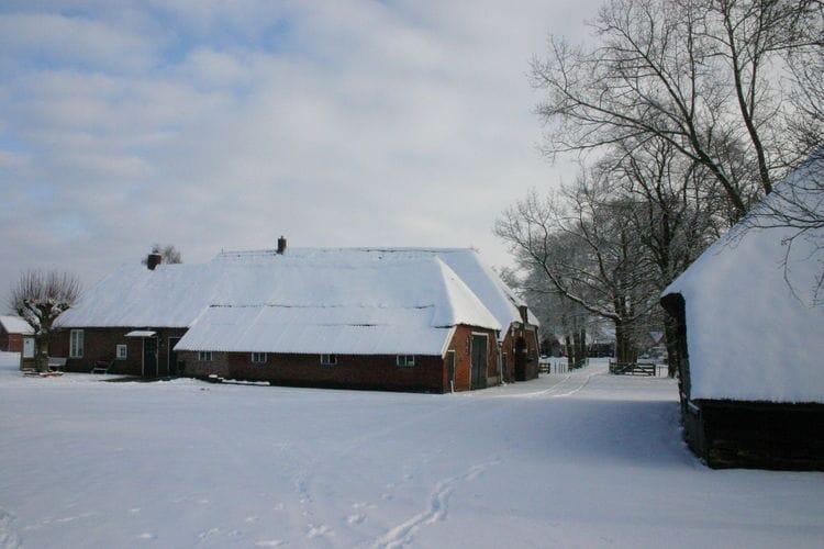 Maison de vacances Buitenplaats Berg en Bos (61499), Lemele, , Overijssel, Pays-Bas, image 39