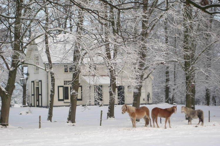 Maison de vacances Buitenplaats Berg en Bos (61508), Lemele, , Overijssel, Pays-Bas, image 29
