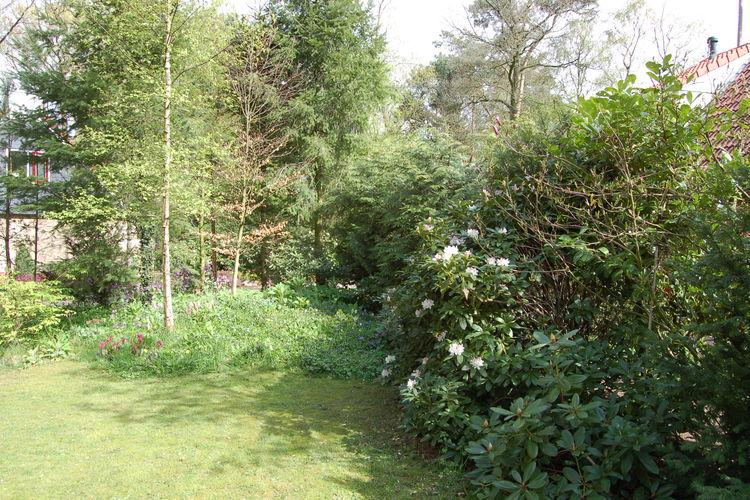 Ferienhaus Buitenplaats Berg en Bos 10 (61508), Lemele, , Overijssel, Niederlande, Bild 20