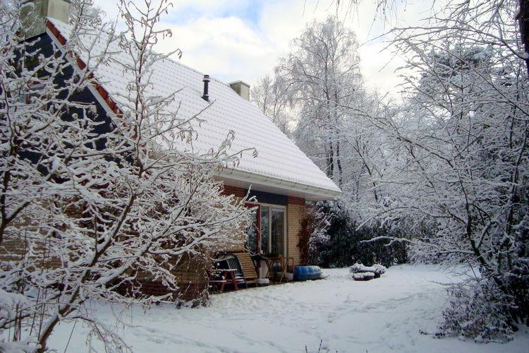 Maison de vacances Buitenplaats Berg en Bos (61508), Lemele, , Overijssel, Pays-Bas, image 4
