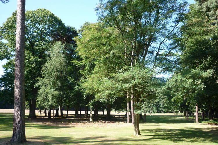 Ferienhaus Landgoed Wouwse Plantage (59175), Wouwse Plantage, , Nordbrabant, Niederlande, Bild 22