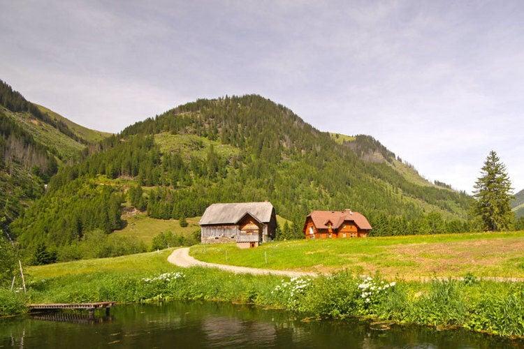 Ferienwohnung Zettler (65850), Donnersbachwald, Schladming-Dachstein, Steiermark, Österreich, Bild 4
