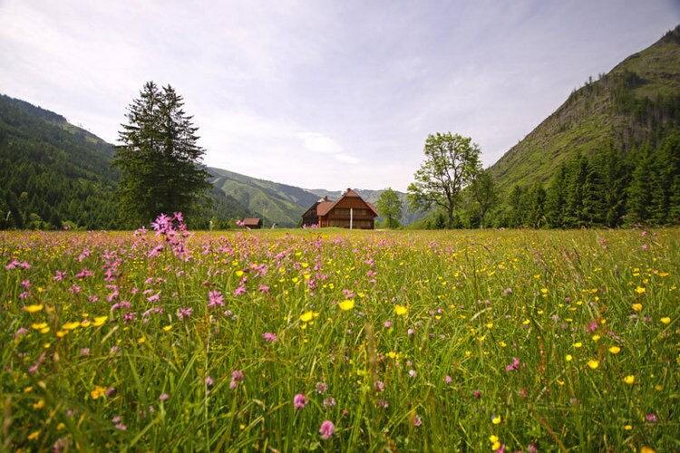 Ferienwohnung Zettler (65850), Donnersbachwald, Schladming-Dachstein, Steiermark, Österreich, Bild 3