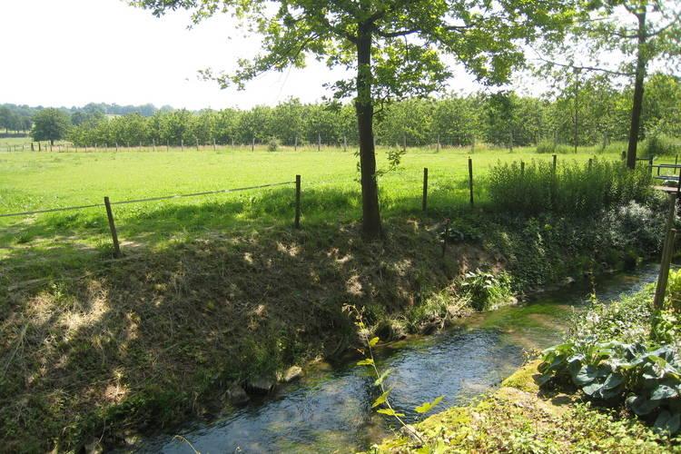 Ferienwohnung Meschermolen (65732), Mesch, , Limburg (NL), Niederlande, Bild 21