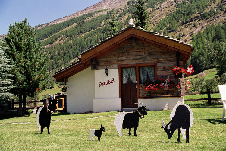 Holiday house Stadel (65833), Saas Grund, Saas Valley, Valais, Switzerland, picture 1