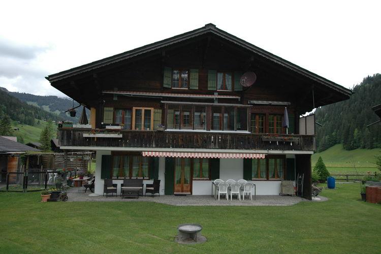 Bern Vakantiewoningen te huur Gezellig appartement, balkon op het zuidoosten, grote ligweide met tuinstoelen