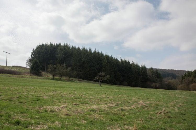 Ferienwohnung Im Elzbachtal (255238), Lirstal, Vulkaneifel, Rheinland-Pfalz, Deutschland, Bild 29