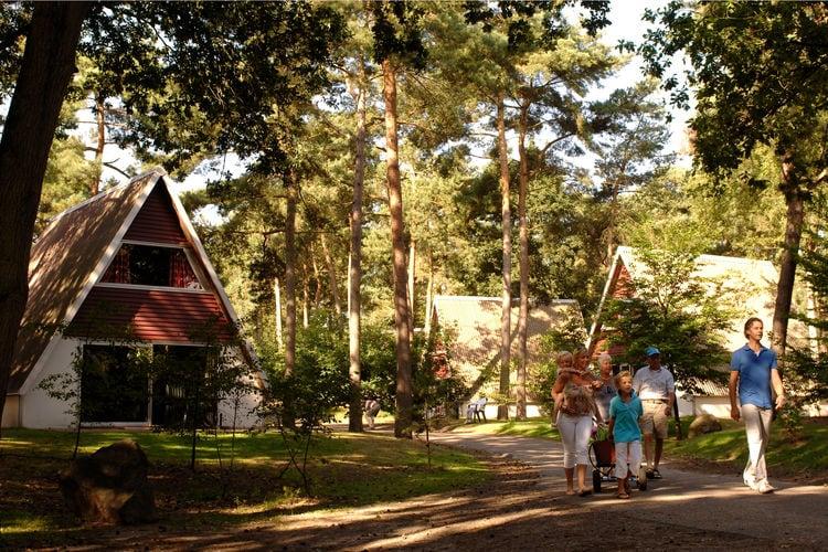Bospark  t Wolfsven  North Brabant Netherlands