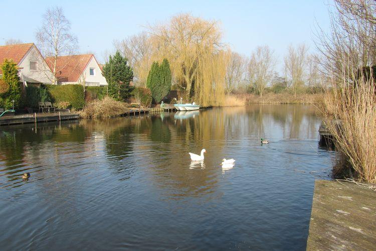 Ferienhaus Bungalowpark de Vlietlanden 2 (71998), Wervershoof, , Nordholland, Niederlande, Bild 9