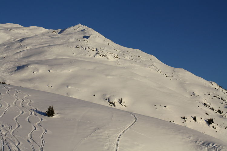 L'aiguille du Mey - Area - Winter
