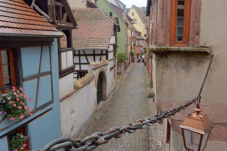 Ferienwohnung La Stub (302845), Riquewihr, Oberelsass, Elsass, Frankreich, Bild 20
