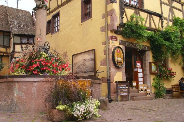 Ferienwohnung La Stub (302845), Riquewihr, Oberelsass, Elsass, Frankreich, Bild 24