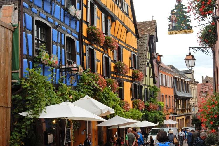 Ferienwohnung L'Etable (302799), Riquewihr, Oberelsass, Elsass, Frankreich, Bild 31