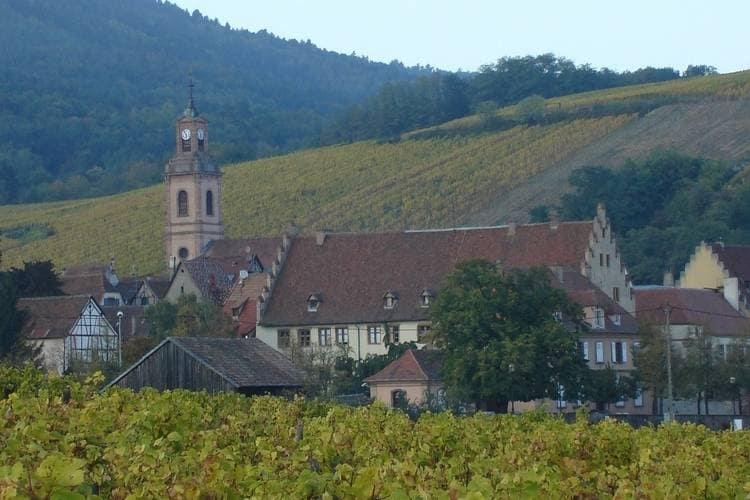 Ferienwohnung La Kuch (302804), Riquewihr, Oberelsass, Elsass, Frankreich, Bild 33