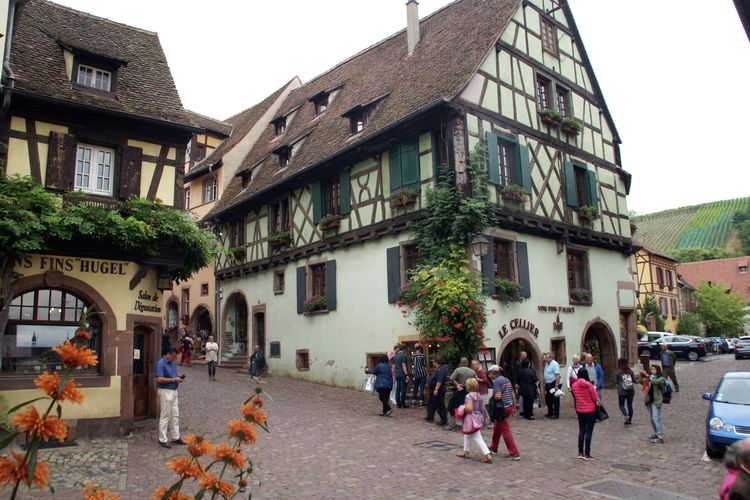 Ferienwohnung La Kuch (302804), Riquewihr, Oberelsass, Elsass, Frankreich, Bild 23