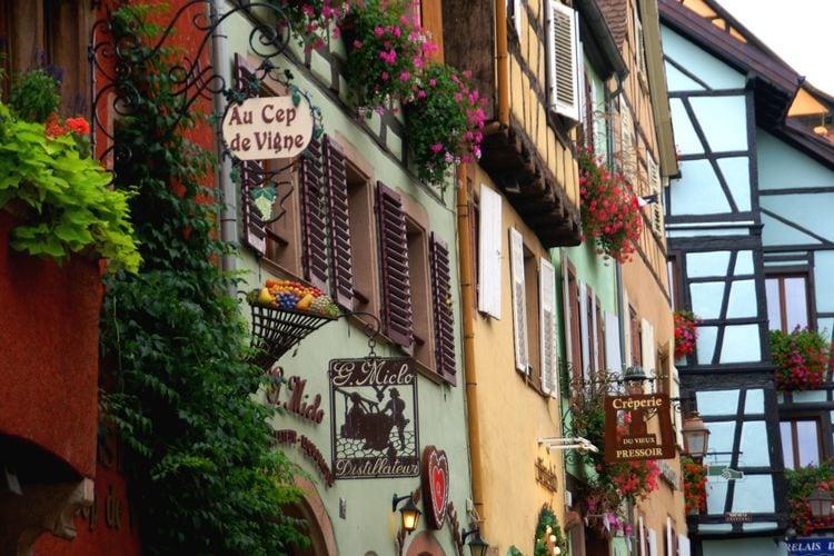 Ferienwohnung La Kuch (302804), Riquewihr, Oberelsass, Elsass, Frankreich, Bild 31
