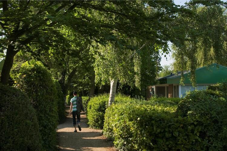 Ferienhaus Kustpark Klein Poelland 3 (317716), Renesse, , Seeland, Niederlande, Bild 16