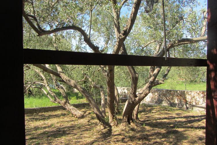 Ferienhaus House Olive Tree (77030), Pasman, Insel Pasman, Dalmatien, Kroatien, Bild 27