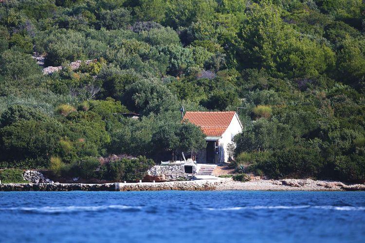 Ferienhaus House Vagabond Lodge (90382), Pasman, Insel Pasman, Dalmatien, Kroatien, Bild 3