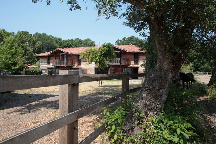 Ferienhaus Villas Clairière aux Chevreuils 2 (90004), Moliets Plage, Atlantikküste Landes, Aquitanien, Frankreich, Bild 6