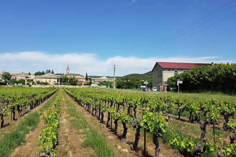 Ferienhaus L'Oliveraie (94736), Bagnols sur Cèze, Gard Binnenland, Languedoc-Roussillon, Frankreich, Bild 23