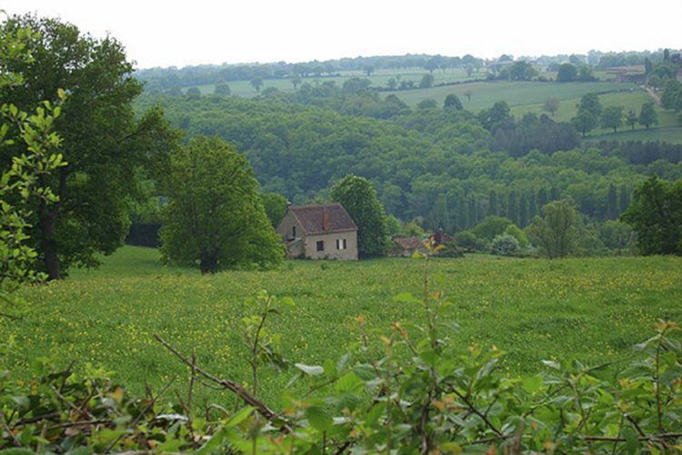 Ferienhaus Gite - Cerilly (101206), Cérilly, Allier, Auvergne, Frankreich, Bild 21