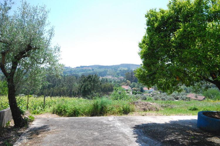 Ferienhaus Casa do Sonho (101207), Beco, Costa Verde (PT), Nord-Portugal, Portugal, Bild 26