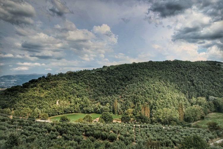 Ferienwohnung Molinella (101436), Bettona, Perugia, Umbrien, Italien, Bild 38