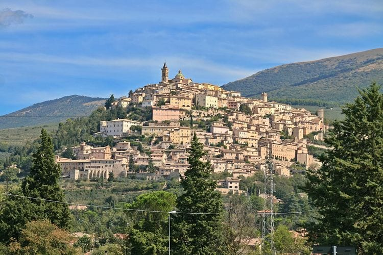 Ferienwohnung Ginestra (101432), Trevi, Perugia, Umbrien, Italien, Bild 36