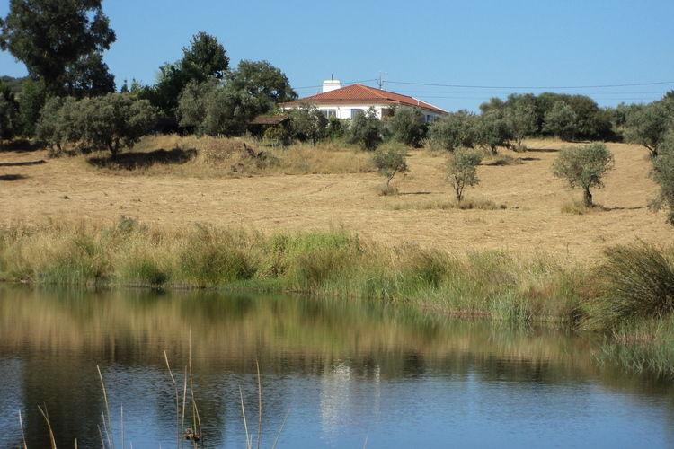 Ferienhaus Casa das Flores (101241), Montemor-o-Novo, , Alentejo, Portugal, Bild 33