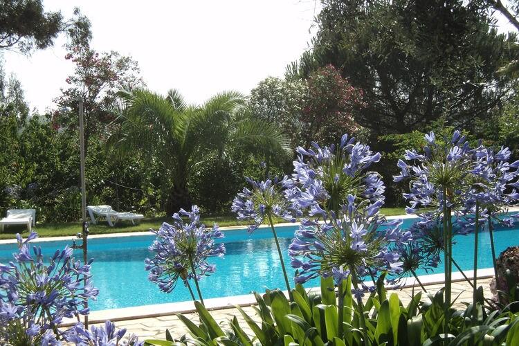 Ferienhaus Casa das Flores (101241), Montemor-o-Novo, , Alentejo, Portugal, Bild 37