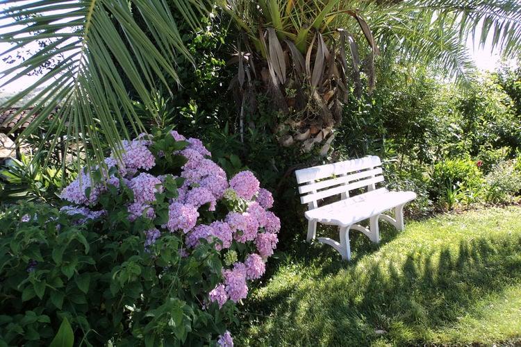 Ferienhaus Casa das Flores (101241), Montemor-o-Novo, , Alentejo, Portugal, Bild 25