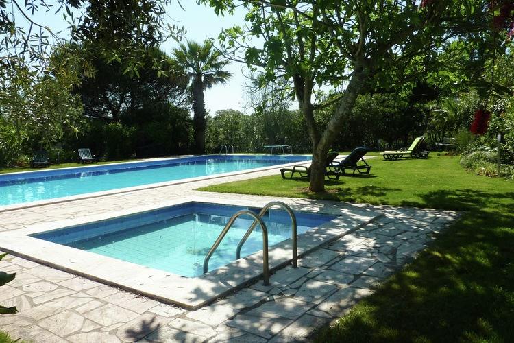 Ferienhaus Casa das Flores (101241), Montemor-o-Novo, , Alentejo, Portugal, Bild 7