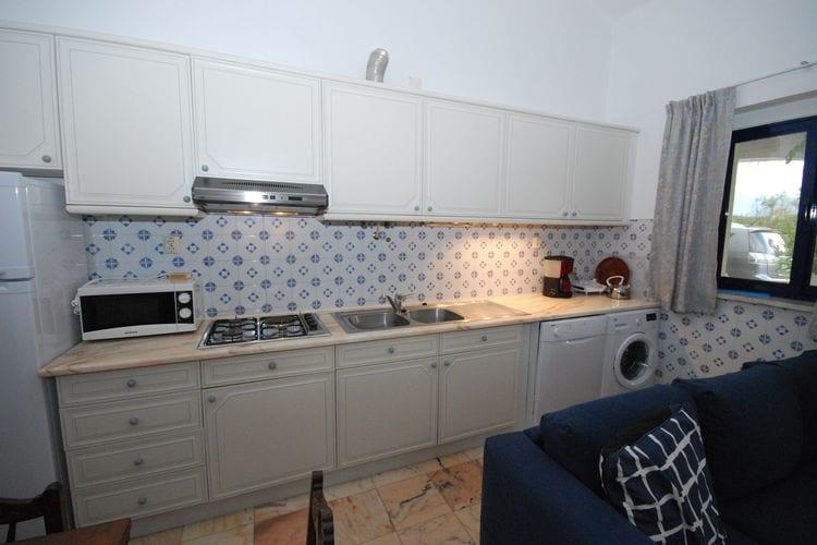Ferienhaus Casa das Flores (101241), Montemor-o-Novo, , Alentejo, Portugal, Bild 15