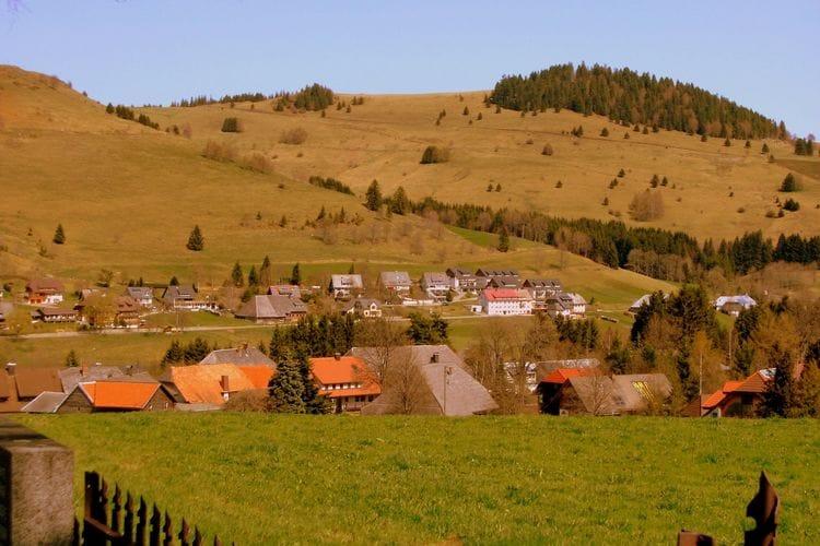Ferienwohnung Wannenhof (255402), Bernau, Schwarzwald, Baden-Württemberg, Deutschland, Bild 39