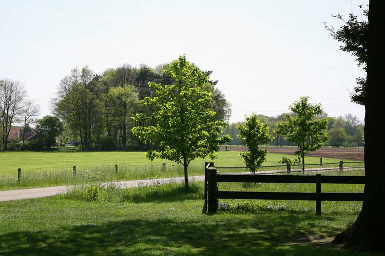 Ferienhaus 't Leuske (101236), Ambt Delden, , Overijssel, Niederlande, Bild 30
