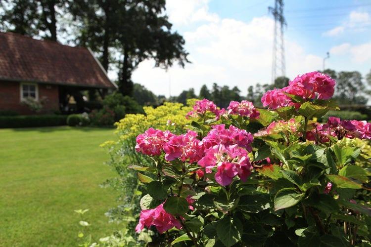 Ferienhaus 't Leuske (101236), Ambt Delden, , Overijssel, Niederlande, Bild 3