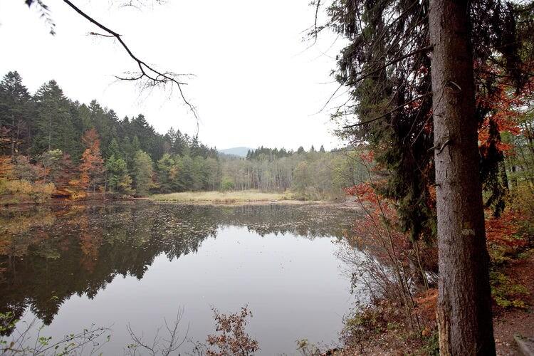 Ferienwohnung Irmi (255508), Hauzenberg, Bayerischer Wald, Bayern, Deutschland, Bild 23