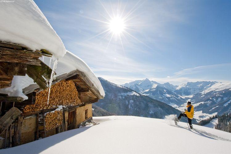 Ferienwohnung Schneiderhäusl (253720), Alpbach, Alpbachtal & Tiroler Seenland, Tirol, Österreich, Bild 29