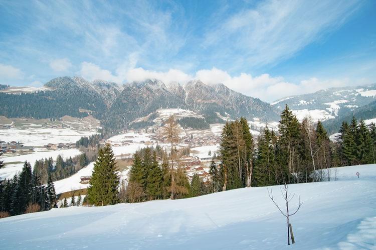 Ferienwohnung Schneiderhäusl (253720), Alpbach, Alpbachtal & Tiroler Seenland, Tirol, Österreich, Bild 23
