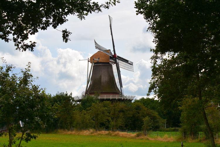 Ferienhaus Onder de Linde (101340), Oostermeer, , , Niederlande, Bild 36