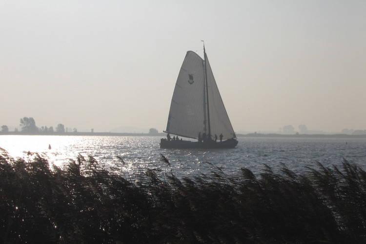 Ferienhaus Watersportpark De Pharshoeke 5 (101492), Heeg, , , Niederlande, Bild 11
