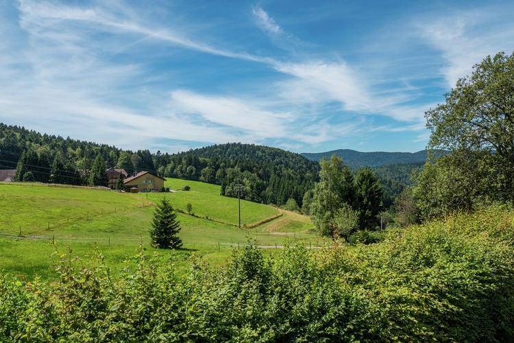 Ferienwohnung Herrischried (255393), Herrischried, Schwarzwald, Baden-Württemberg, Deutschland, Bild 23
