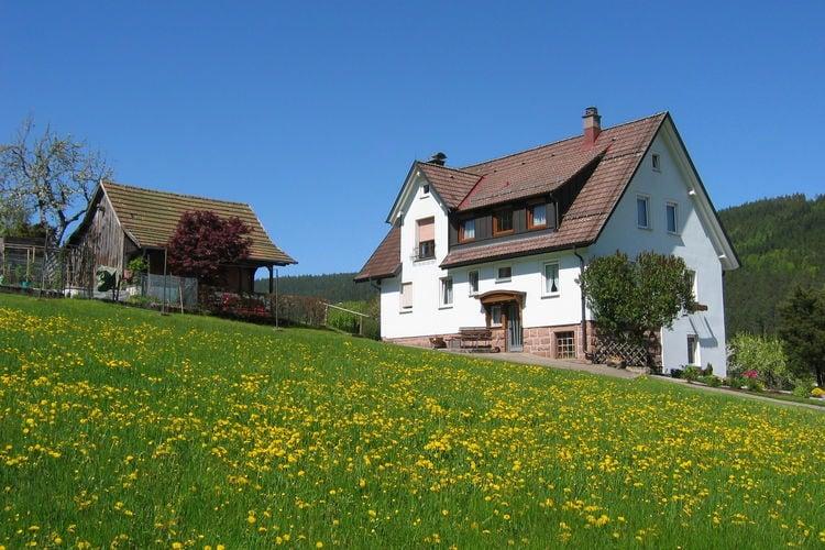 Gezellige vakantiewoning in het Zwarte Woud op een zeer rustige en zonnige locatie